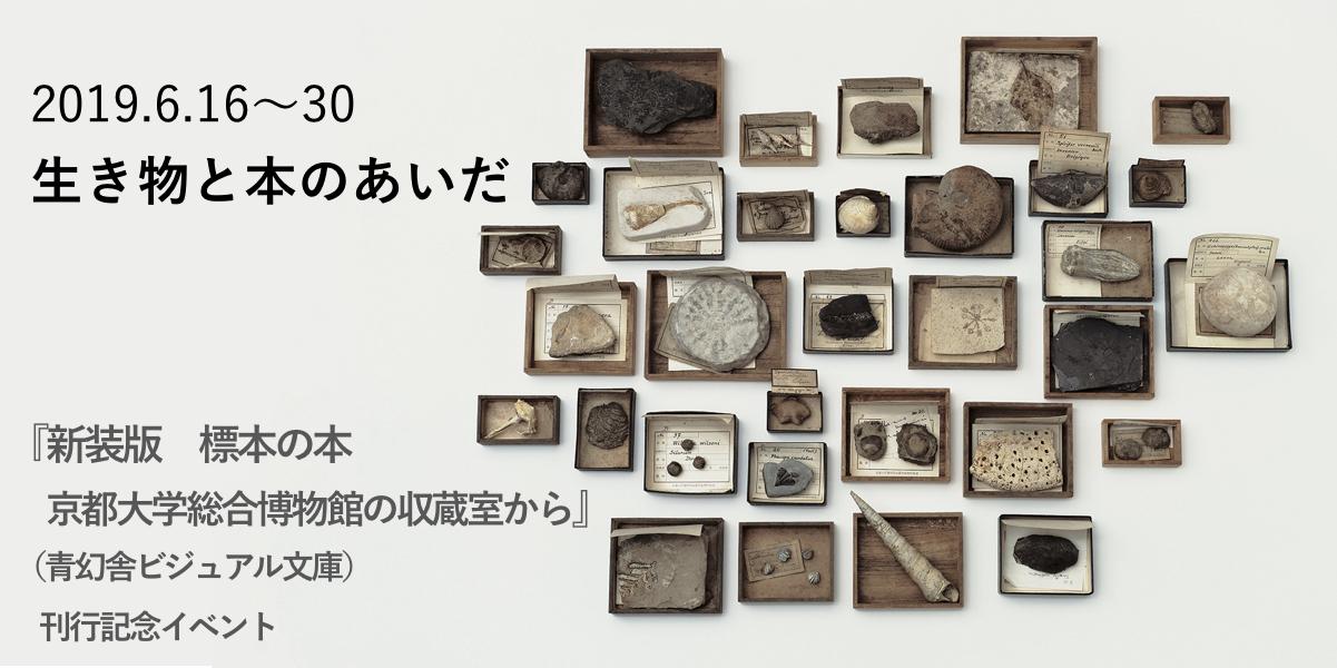 生き物と本のあいだ 『新装版 標本の本 京都大学総合博物館の収蔵室から』(青幻舎ビジュアル文庫) 刊行記念イベント